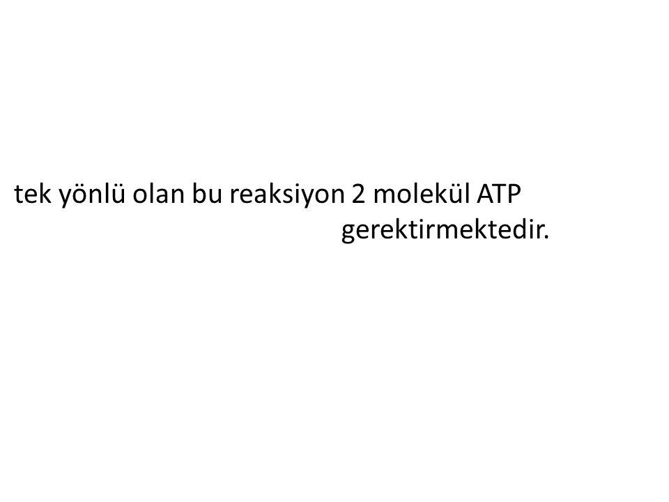 tek yönlü olan bu reaksiyon 2 molekül ATP gerektirmektedir.