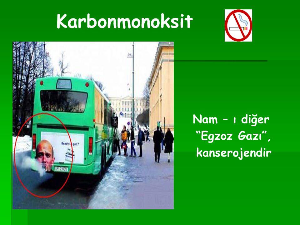 Karbonmonoksit Nam – ı diğer Egzoz Gazı , kanserojendir