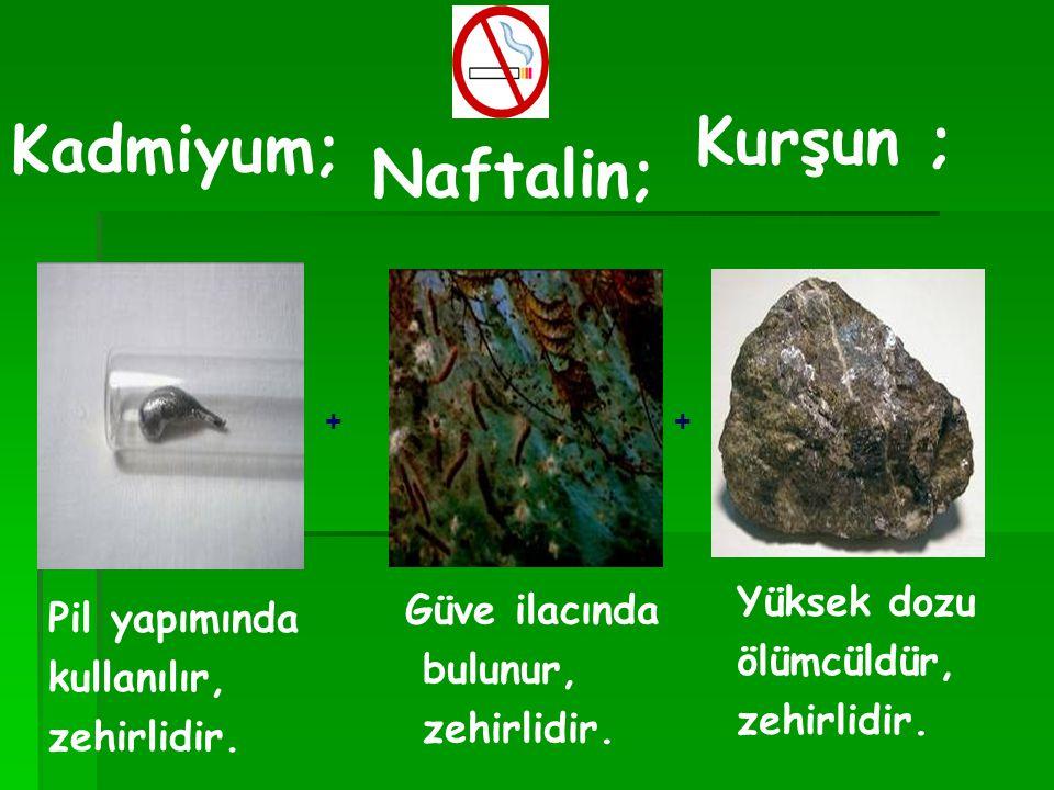 Kurşun ; Kadmiyum; Naftalin; Yüksek dozu Güve ilacında Pil yapımında