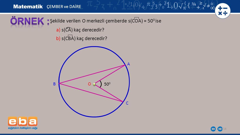 ÖRNEK : Şekilde verilen O merkezli çemberde s(COA) = 500 ise (