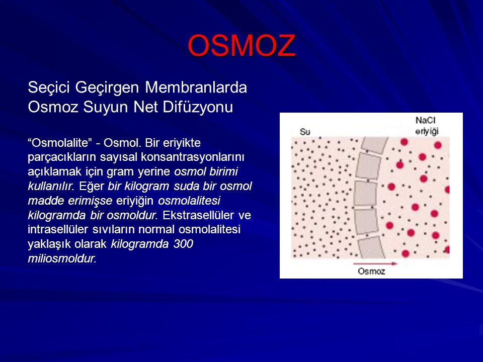 OSMOZ Seçici Geçirgen Membranlarda Osmoz Suyun Net Difüzyonu