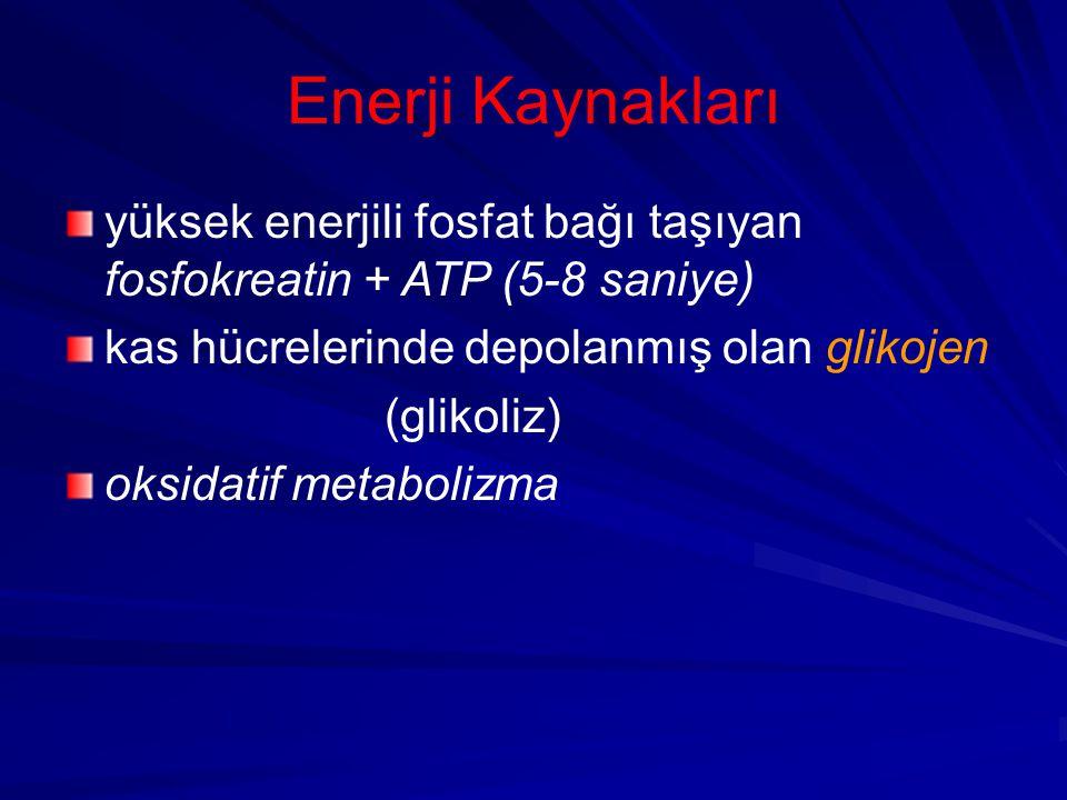 Enerji Kaynakları yüksek enerjili fosfat bağı taşıyan fosfokreatin + ATP (5-8 saniye) kas hücrelerinde depolanmış olan glikojen.