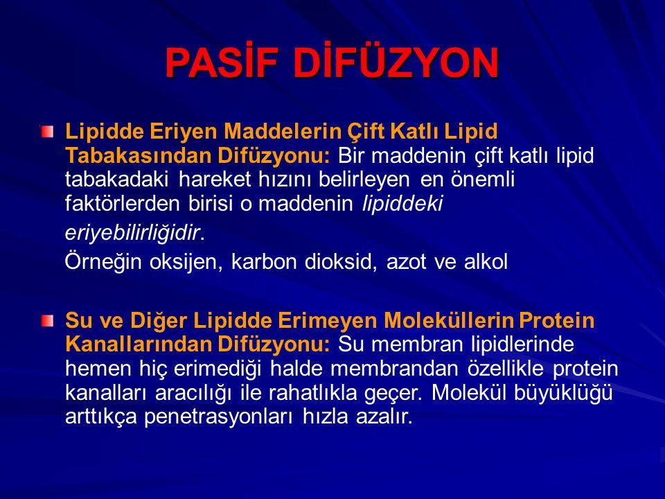 PASİF DİFÜZYON