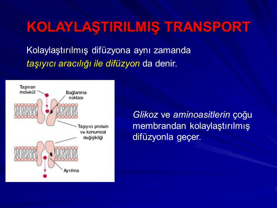 KOLAYLAŞTlRILMIŞ TRANSPORT