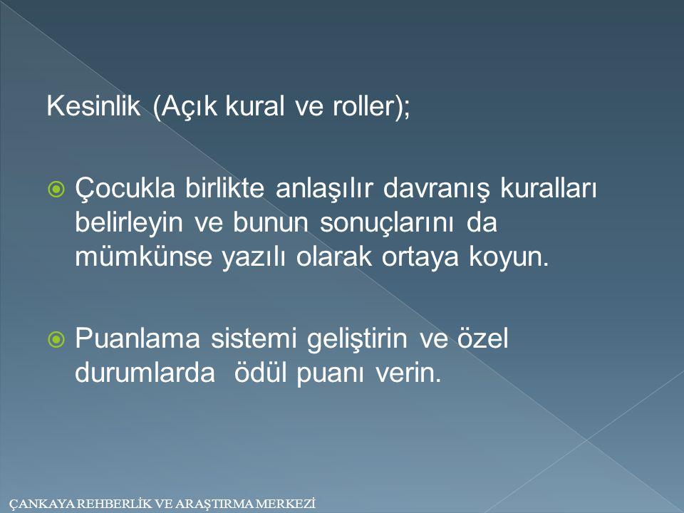 Kesinlik (Açık kural ve roller);