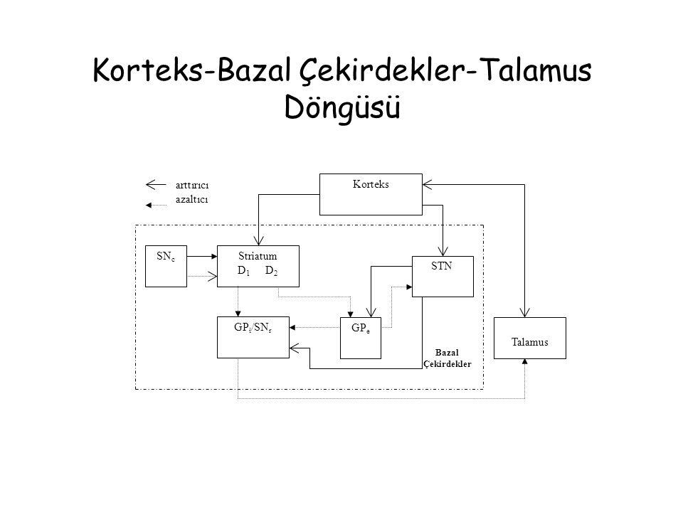 Korteks-Bazal Çekirdekler-Talamus Döngüsü