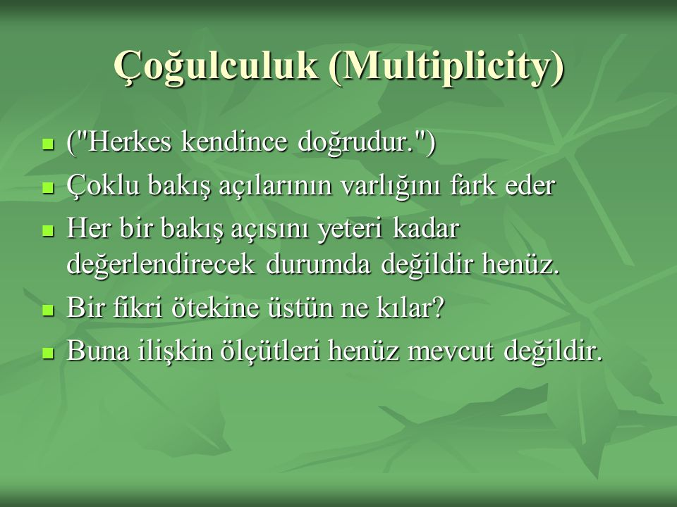 Çoğulculuk (Multiplicity)