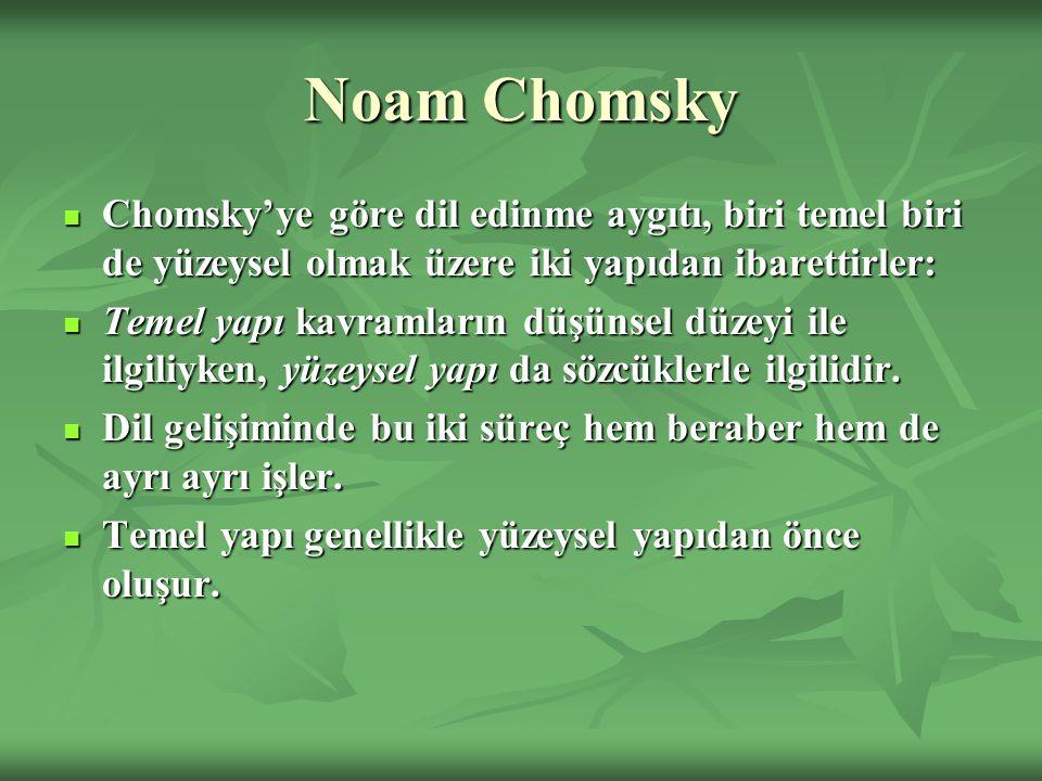 Noam Chomsky Chomsky'ye göre dil edinme aygıtı, biri temel biri de yüzeysel olmak üzere iki yapıdan ibarettirler: