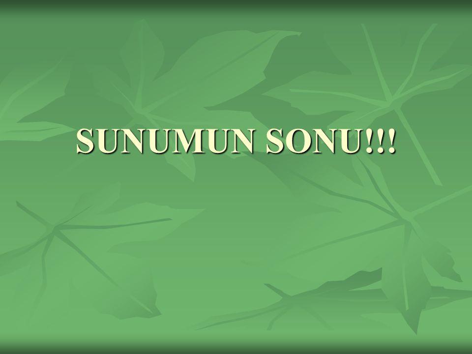 SUNUMUN SONU!!!