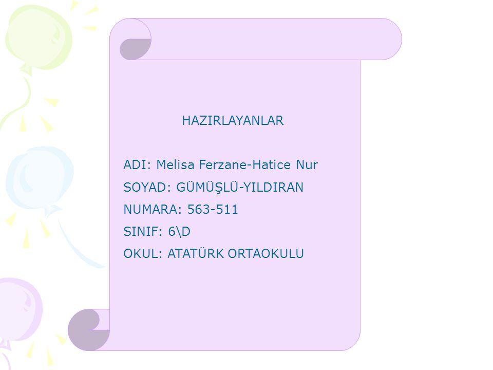 HAZIRLAYANLAR ADI: Melisa Ferzane-Hatice Nur. SOYAD: GÜMÜŞLÜ-YILDIRAN. NUMARA: 563-511. SINIF: 6\D.