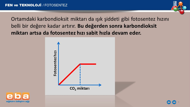 FEN ve TEKNOLOJİ / FOTOSENTEZ