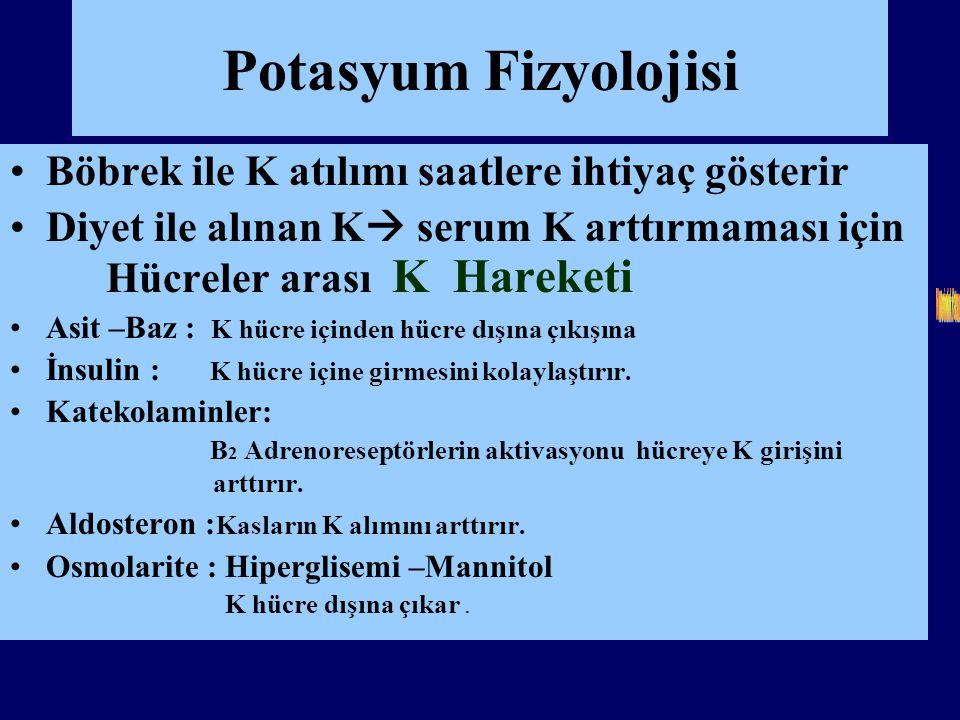 Potasyum Fizyolojisi Metninizi Yazın
