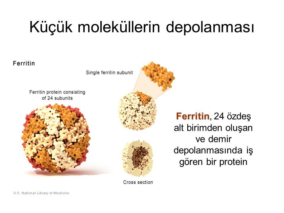 Küçük moleküllerin depolanması