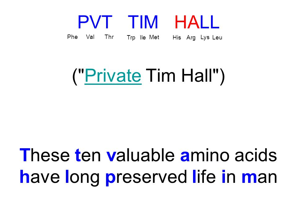 PVT TIM HALL ( Private Tim Hall )