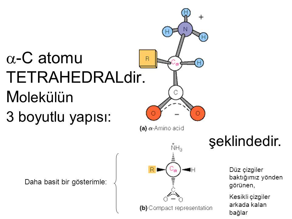 -C atomu TETRAHEDRALdir. Molekülün 3 boyutlu yapısı: