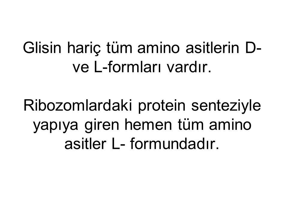 Glisin hariç tüm amino asitlerin D- ve L-formları vardır
