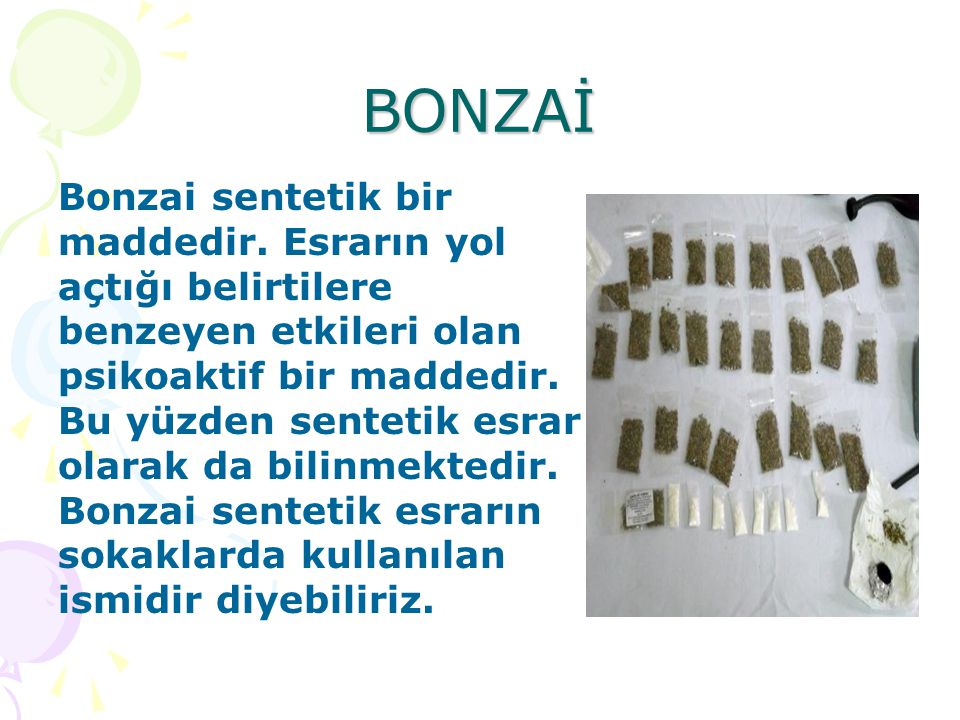 BONZAİ