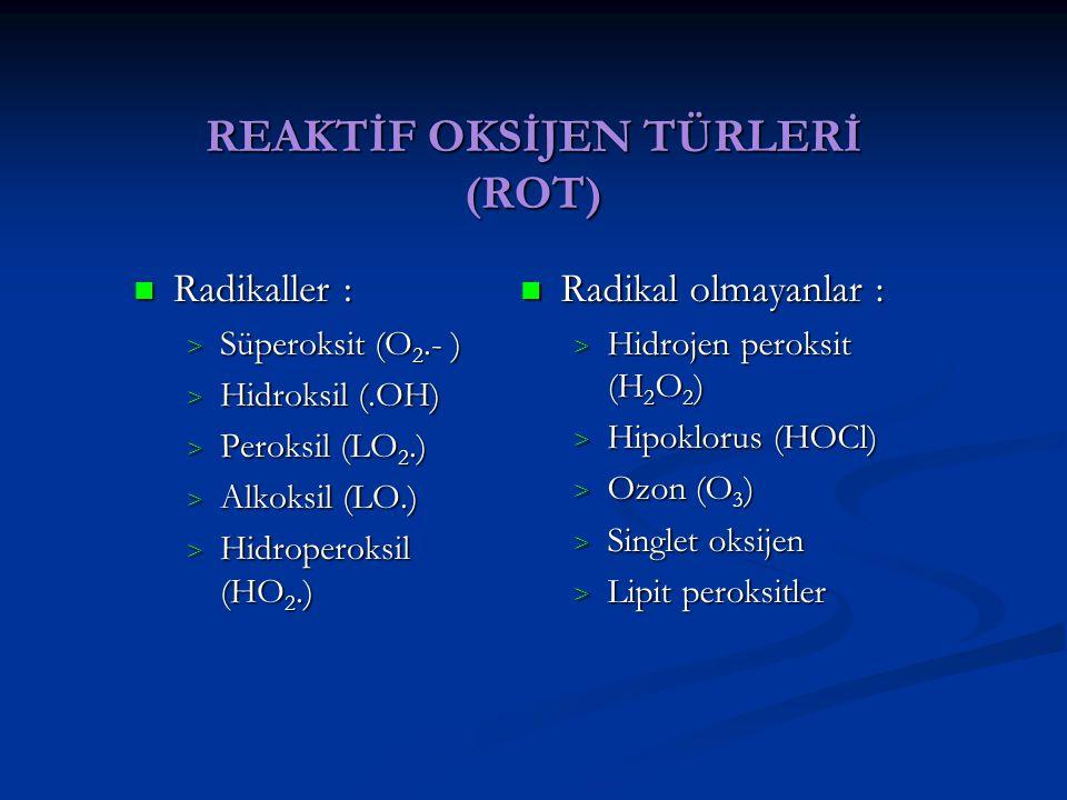 REAKTİF OKSİJEN TÜRLERİ (ROT)