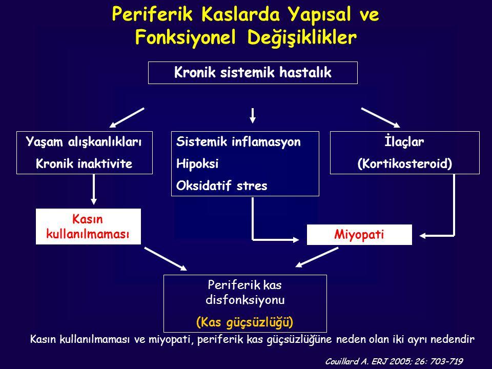 Periferik Kaslarda Yapısal ve Fonksiyonel Değişiklikler
