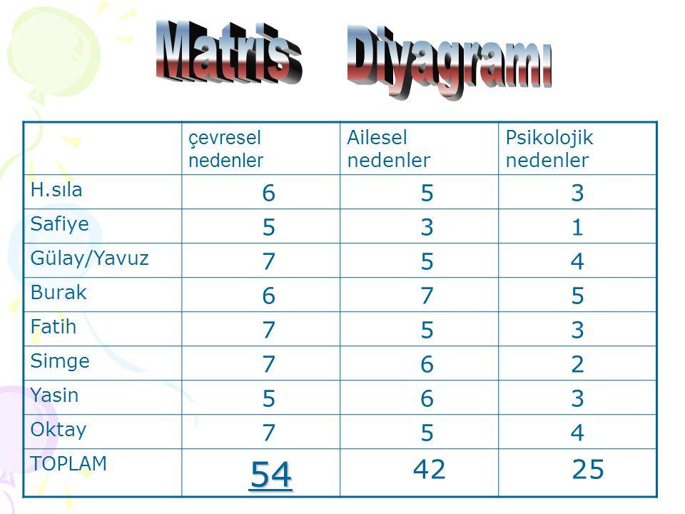 Matris Diyagramı 54 42 25 6 5 3 1 7 4 2 çevresel nedenler