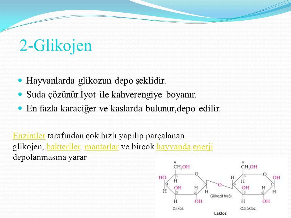 2-Glikojen Hayvanlarda glikozun depo şeklidir.