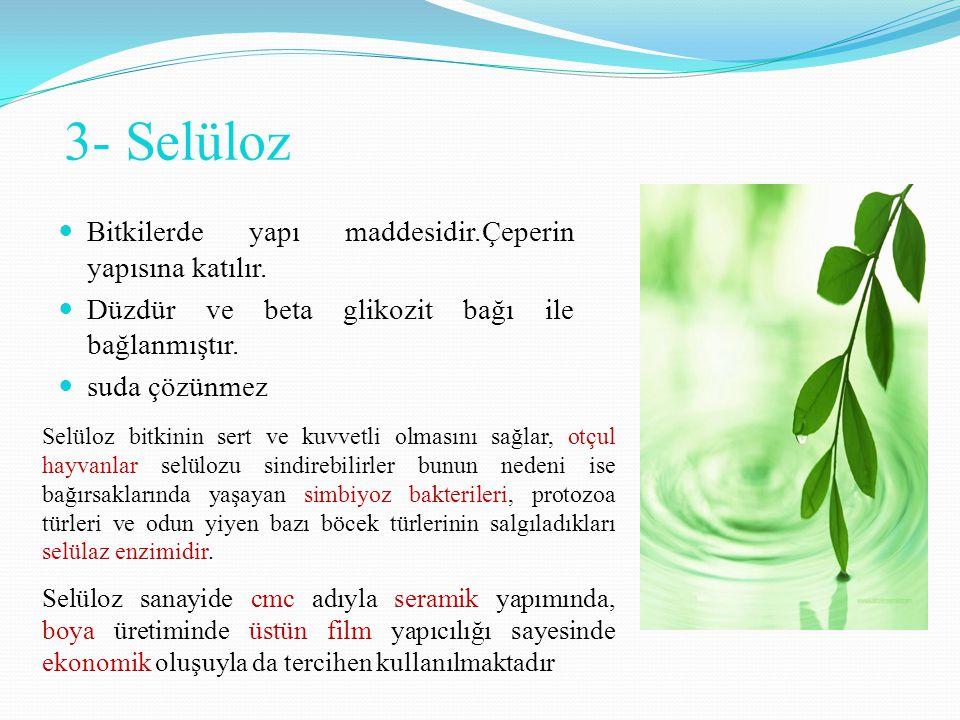 3- Selüloz Bitkilerde yapı maddesidir.Çeperin yapısına katılır.