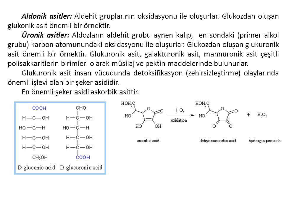 Aldonik asitler: Aldehit gruplarının oksidasyonu ile oluşurlar