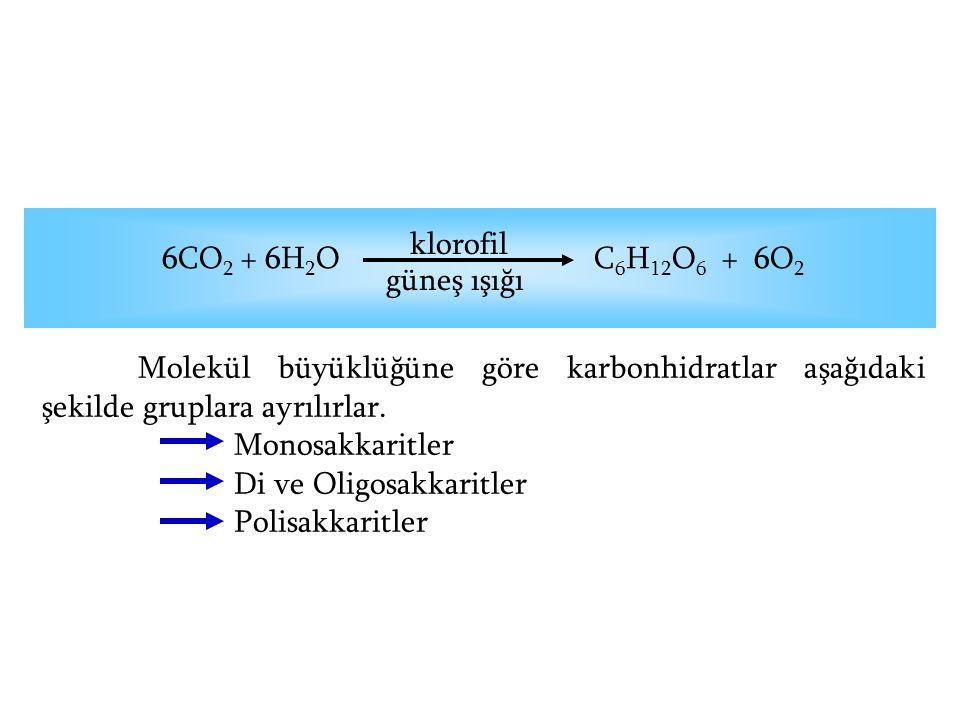 klorofil 6CO2 + 6H2O C6H12O6 + 6O2. güneş ışığı.