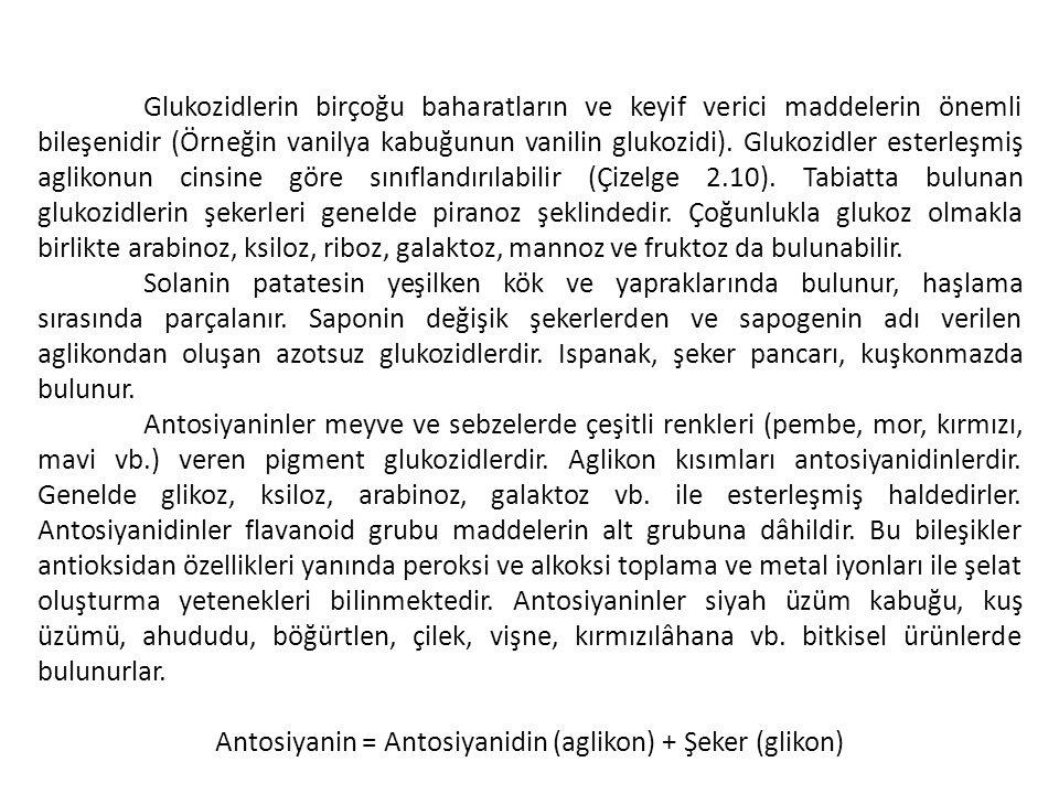 Antosiyanin = Antosiyanidin (aglikon) + Şeker (glikon)