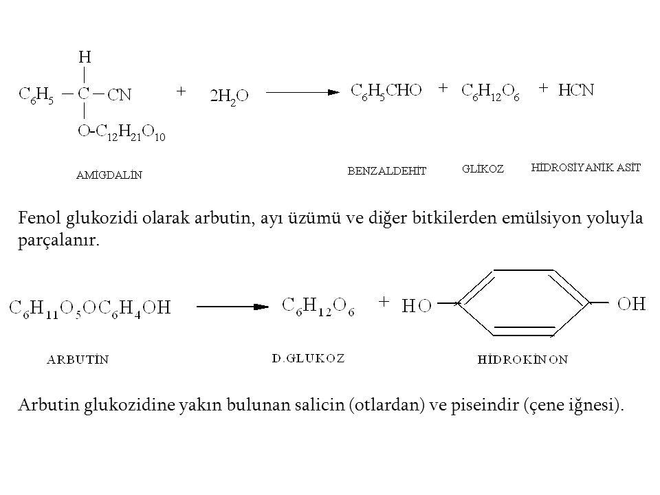 Fenol glukozidi olarak arbutin, ayı üzümü ve diğer bitkilerden emülsiyon yoluyla parçalanır.