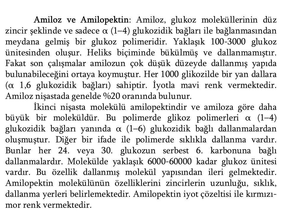 Amiloz ve Amilopektin: Amiloz, glukoz moleküllerinin düz zincir şeklinde ve sadece α (1–4) glukozidik bağları ile bağlanmasından meydana gelmiş bir glukoz polimeridir. Yaklaşık 100-3000 glukoz ünitesinden oluşur. Heliks biçiminde bükülmüş ve dallanmamıştır. Fakat son çalışmalar amilozun çok düşük düzeyde dallanmış yapıda bulunabileceğini ortaya koymuştur. Her 1000 glikozilde bir yan dallara (α 1,6 glukozidik bağları) sahiptir. İyotla mavi renk vermektedir. Amiloz nişastada genelde %20 oranında bulunur.