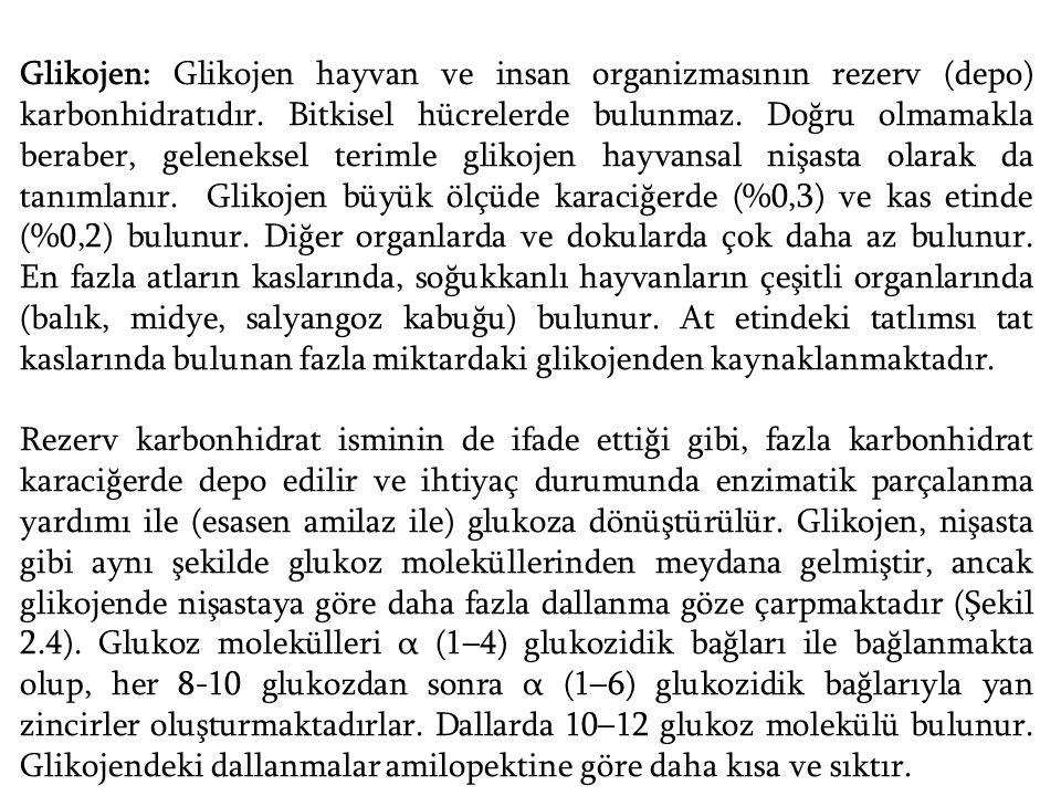 Glikojen: Glikojen hayvan ve insan organizmasının rezerv (depo) karbonhidratıdır. Bitkisel hücrelerde bulunmaz. Doğru olmamakla beraber, geleneksel terimle glikojen hayvansal nişasta olarak da tanımlanır. Glikojen büyük ölçüde karaciğerde (%0,3) ve kas etinde (%0,2) bulunur. Diğer organlarda ve dokularda çok daha az bulunur. En fazla atların kaslarında, soğukkanlı hayvanların çeşitli organlarında (balık, midye, salyangoz kabuğu) bulunur. At etindeki tatlımsı tat kaslarında bulunan fazla miktardaki glikojenden kaynaklanmaktadır.
