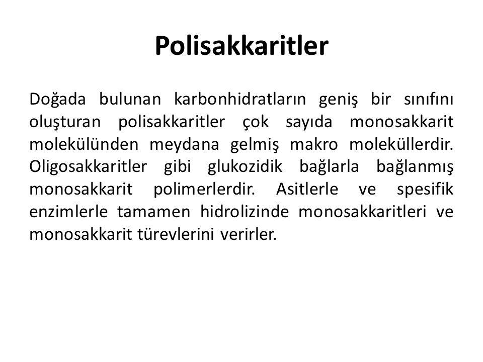 Polisakkaritler