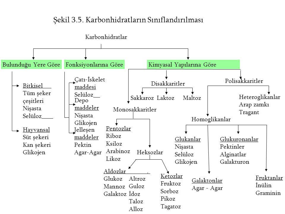 Şekil 3.5. Karbonhidratların Sınıflandırılması