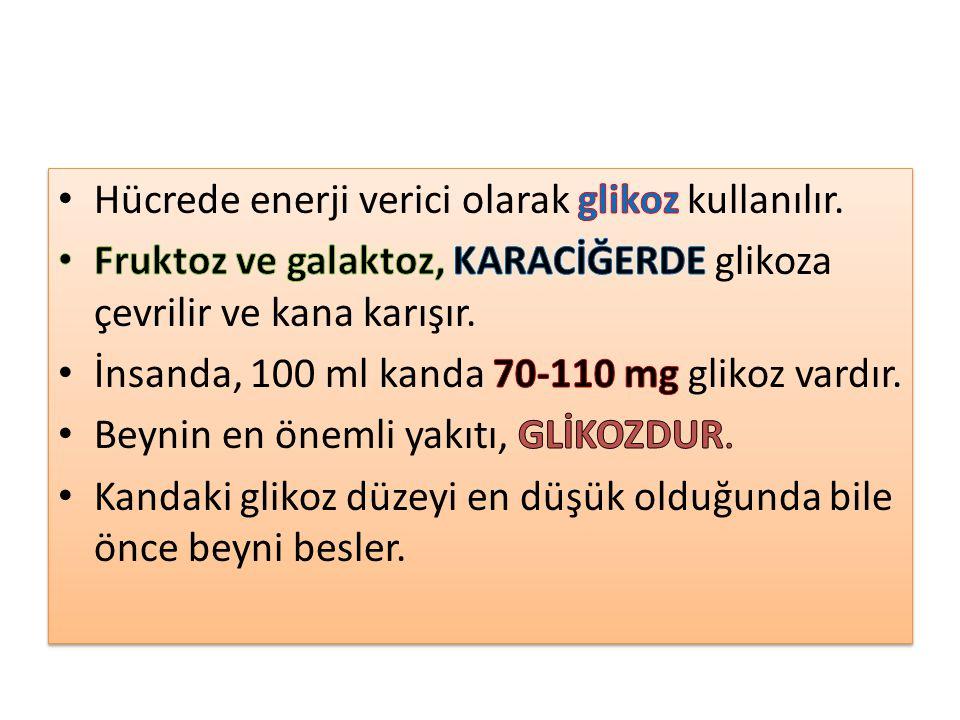 Hücrede enerji verici olarak glikoz kullanılır.