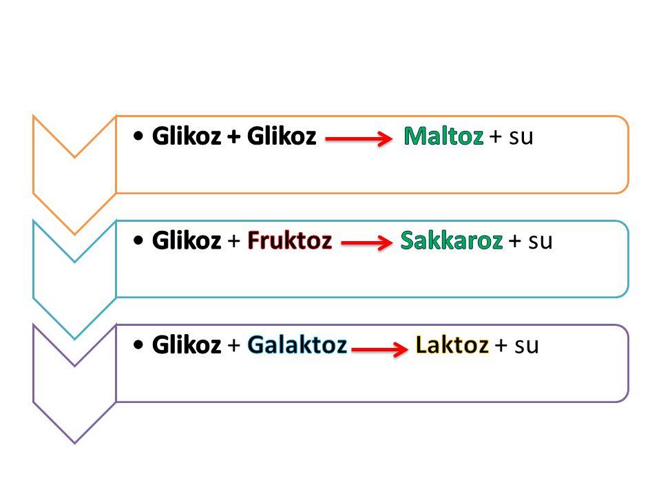 Glikoz + Glikoz Maltoz + su