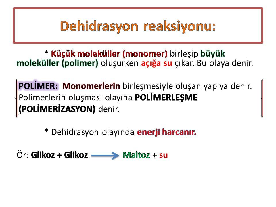 Dehidrasyon reaksiyonu: