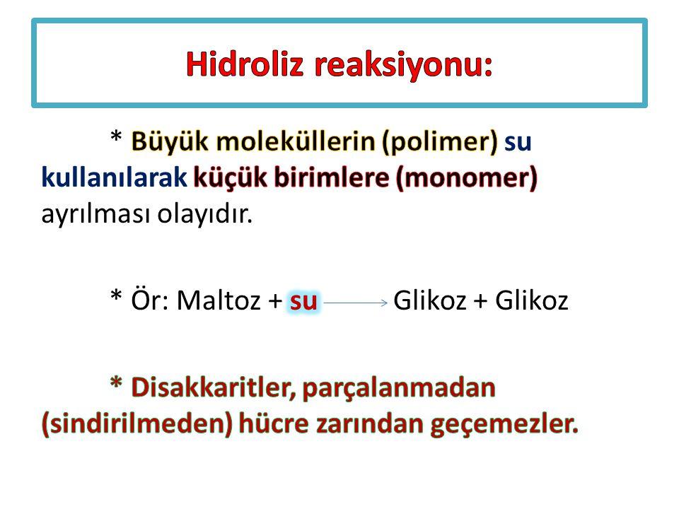 Hidroliz reaksiyonu: