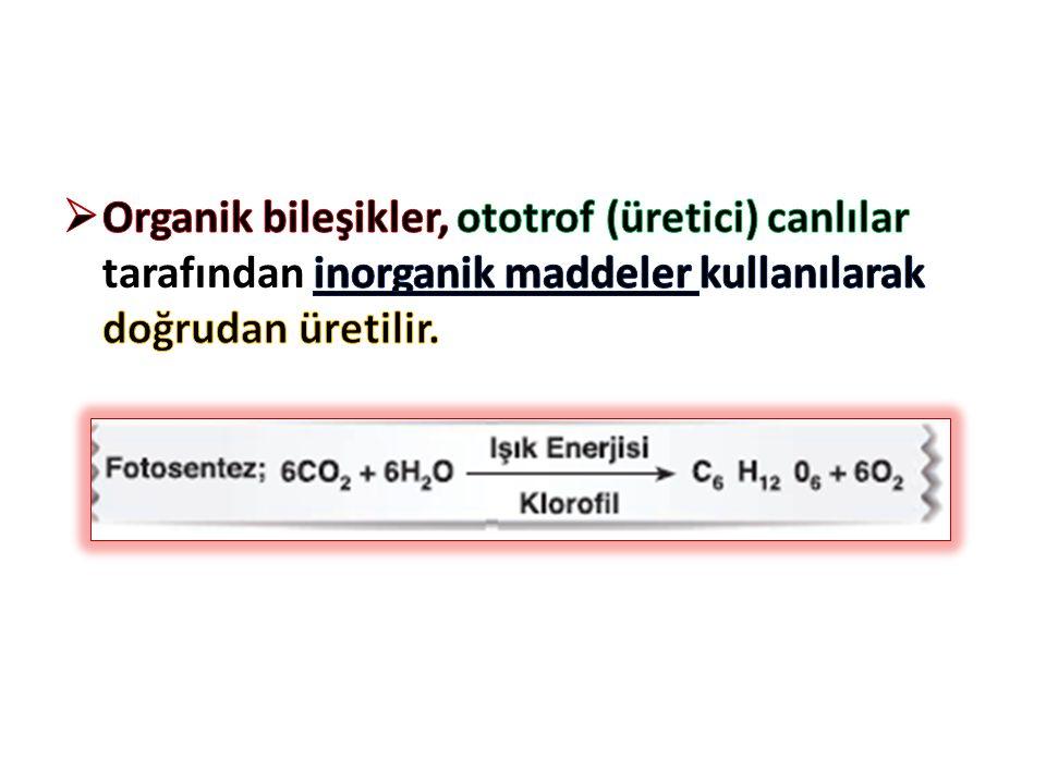 Organik bileşikler, ototrof (üretici) canlılar tarafından inorganik maddeler kullanılarak doğrudan üretilir.