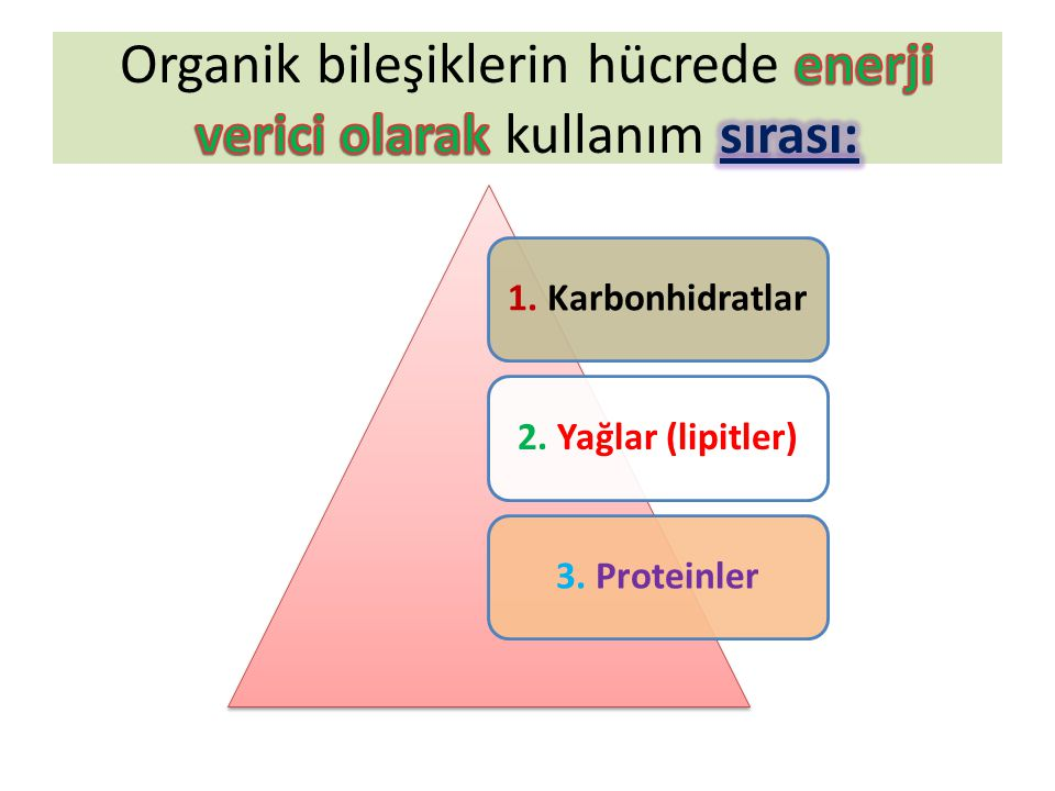Organik bileşiklerin hücrede enerji verici olarak kullanım sırası: