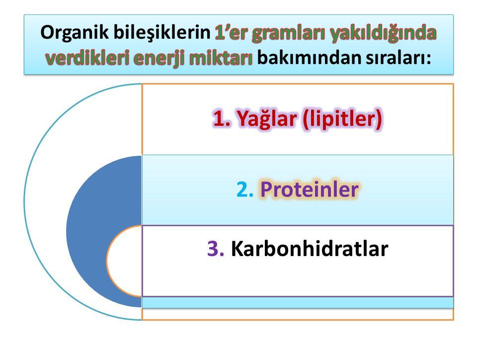 1. Yağlar (lipitler) 2. Proteinler 3. Karbonhidratlar