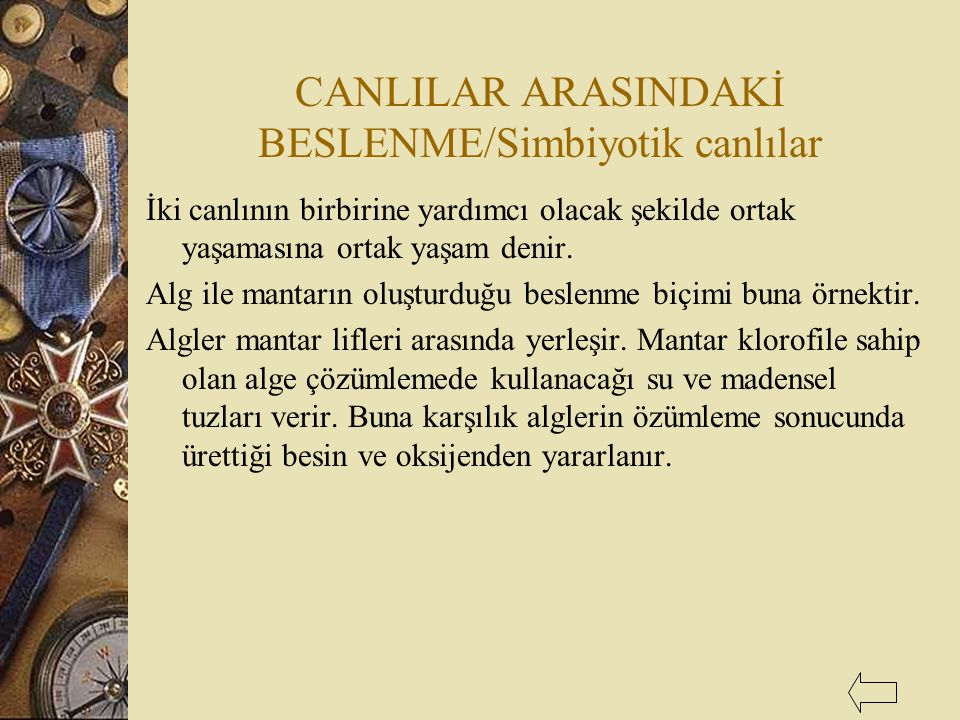 CANLILAR ARASINDAKİ BESLENME/Simbiyotik canlılar