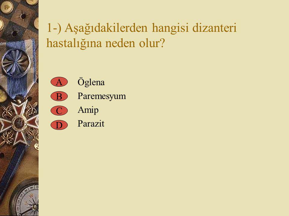 1-) Aşağıdakilerden hangisi dizanteri hastalığına neden olur