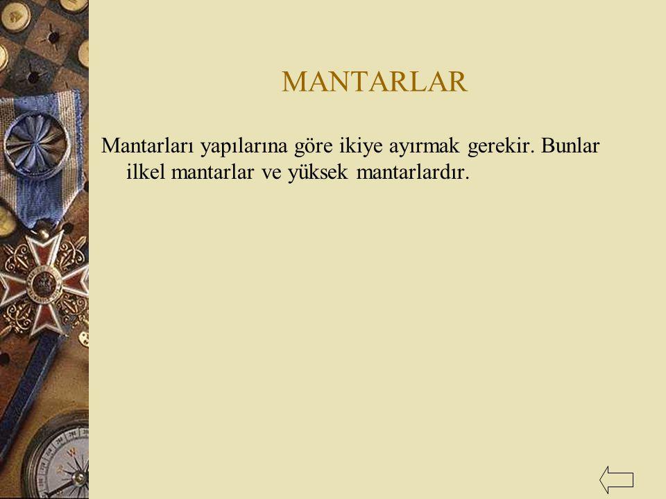 MANTARLAR Mantarları yapılarına göre ikiye ayırmak gerekir.
