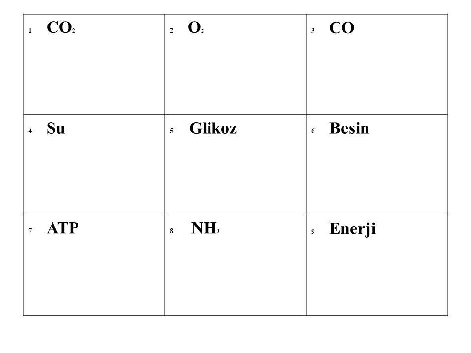 1 CO2 2 O2. 3 CO. 4 Su. 5 Glikoz. 6 Besin. 7 ATP.