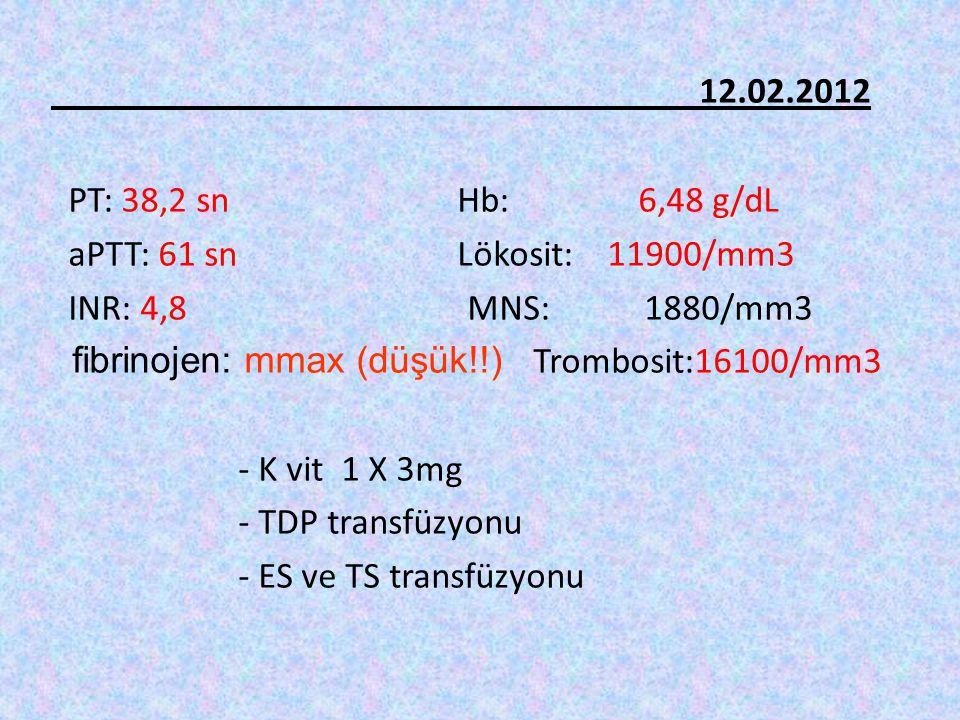 12.02.2012 PT: 38,2 sn Hb: 6,48 g/dL aPTT: 61 sn Lökosit: 11900/mm3