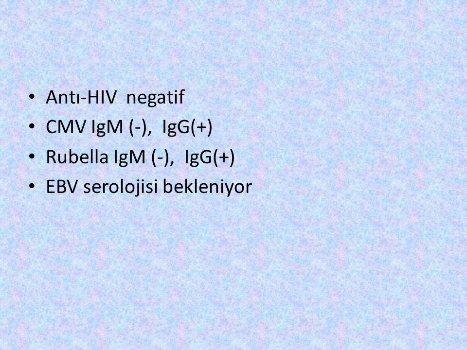 Antı-HIV negatif CMV IgM (-), IgG(+) Rubella IgM (-), IgG(+) EBV serolojisi bekleniyor
