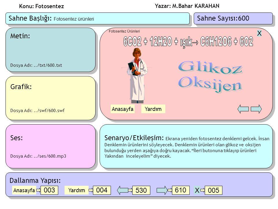 6CO2 + 12H2O + ışık→ C6H12O6 + 6O2 Glikoz Oksijen