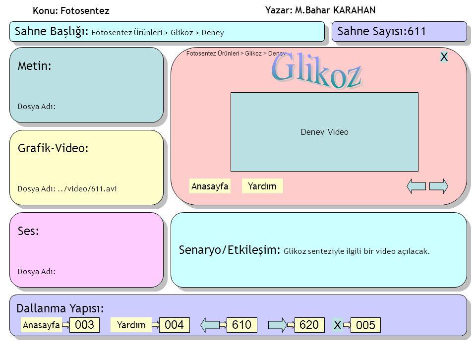 Glikoz Sahne Başlığı: Fotosentez Ürünleri > Glikoz > Deney