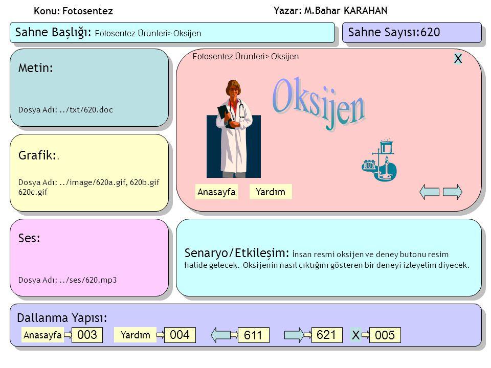 Oksijen Sahne Başlığı: Fotosentez Ürünleri> Oksijen
